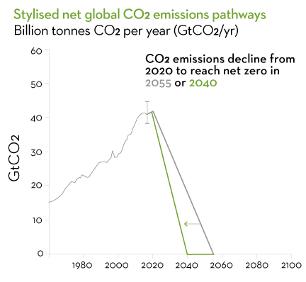 Stylised net global CO2